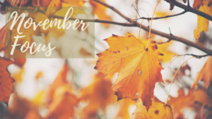 November Focus - leaves